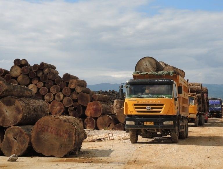 Al dansk import af teak fra Myanmar de sidste fem år kan have været ulovlig