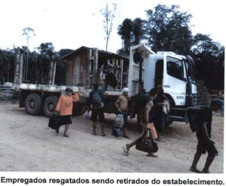 Fem arbejdere på et savværk i Amazonas havde fældet træer inde i regnskoven i over en måned uden hviledage, da inspektører fra arbejdsministeriet foretog en razzia på savværket.