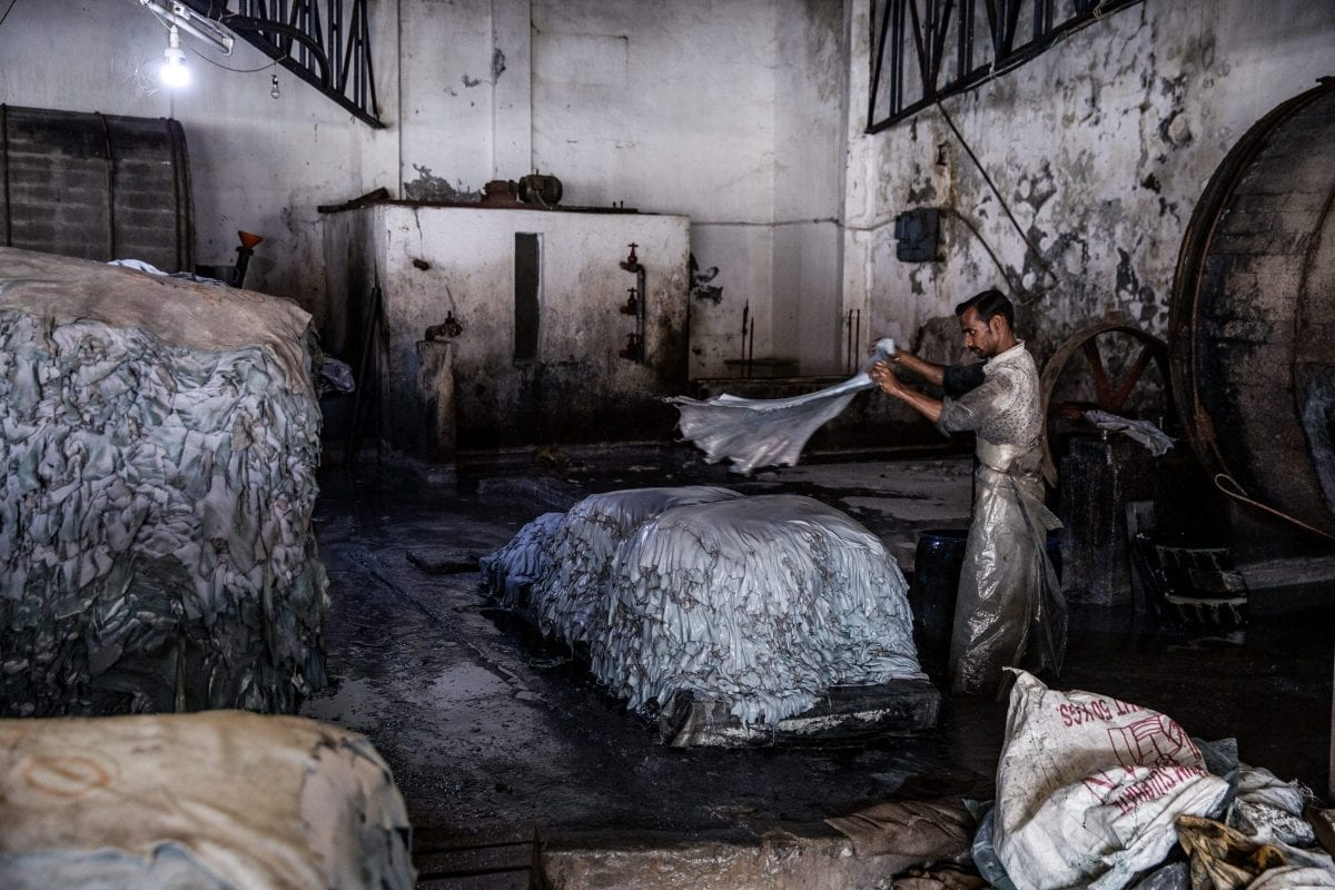 Garveriarbejder hiver krom-garvede skind ud af tromle uden beskyttelsesudstyr