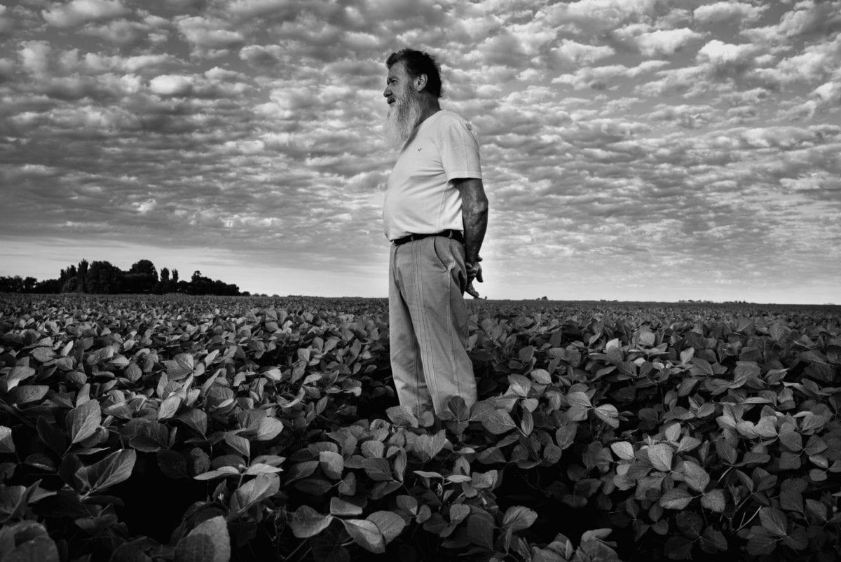 Alfredo Ceran arbejdede i ti år med at sprede pesticider over sojamarker, som den han her står i ved Monte Maiz i Santa Fe-regionen. Han lider i dag af kræft og af ikke-alkoholisk skrumpelever.