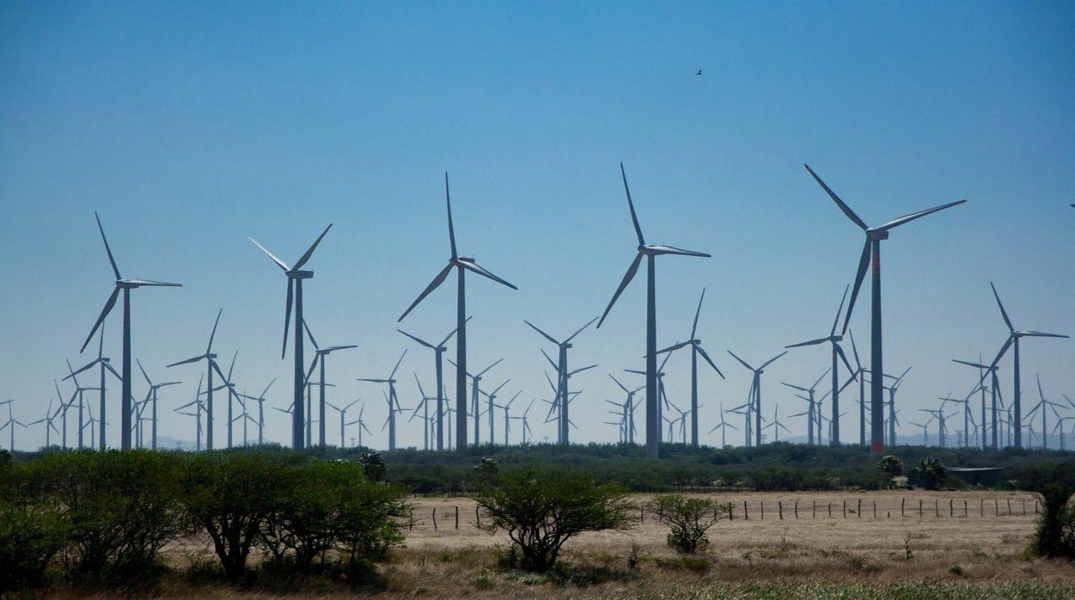 De 132 nye Vestas-møller forsyner ifølge en aktindsigt DanWatch er i besiddelse af, udelukkende private aktører som Coca-Cola og Heineken med strøm, mens mange lokalsamfund fortsat mangler tilstrækkelig elektricitet. Foto: Windwatch.org