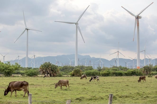 Mexico satser hårdt på vedvarende energi, især i det fattige, vindomsuste Oaxaca. Foto: Oaxaca.gob.mx
