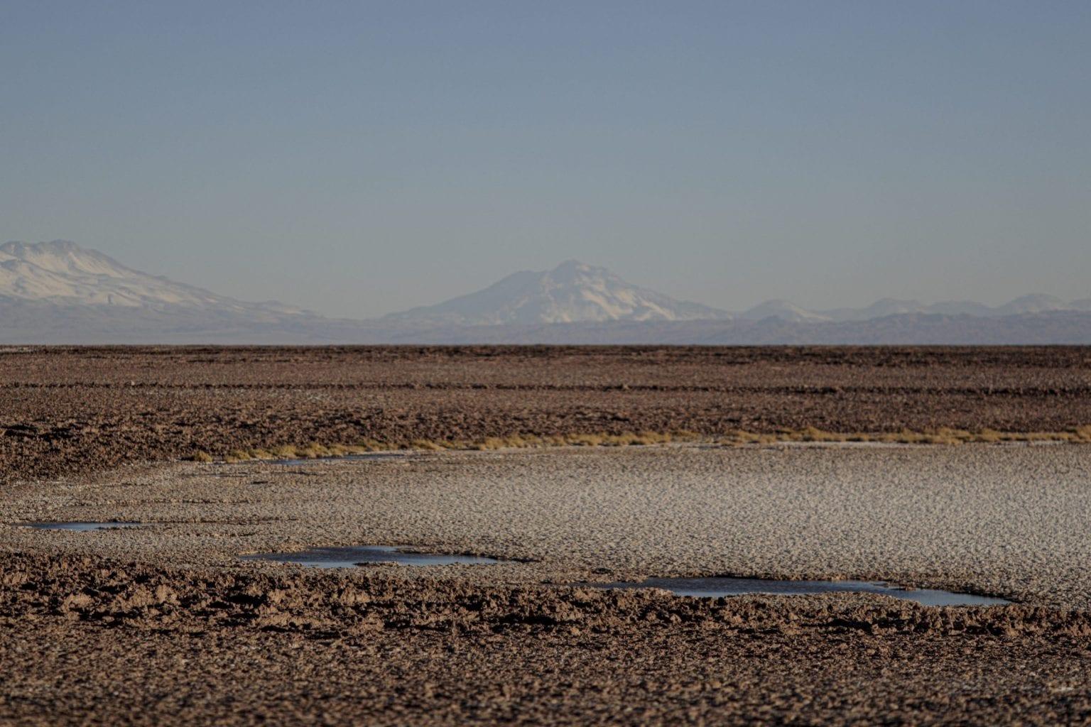 Atacama nær saltvandslagunen Tebinquiche.