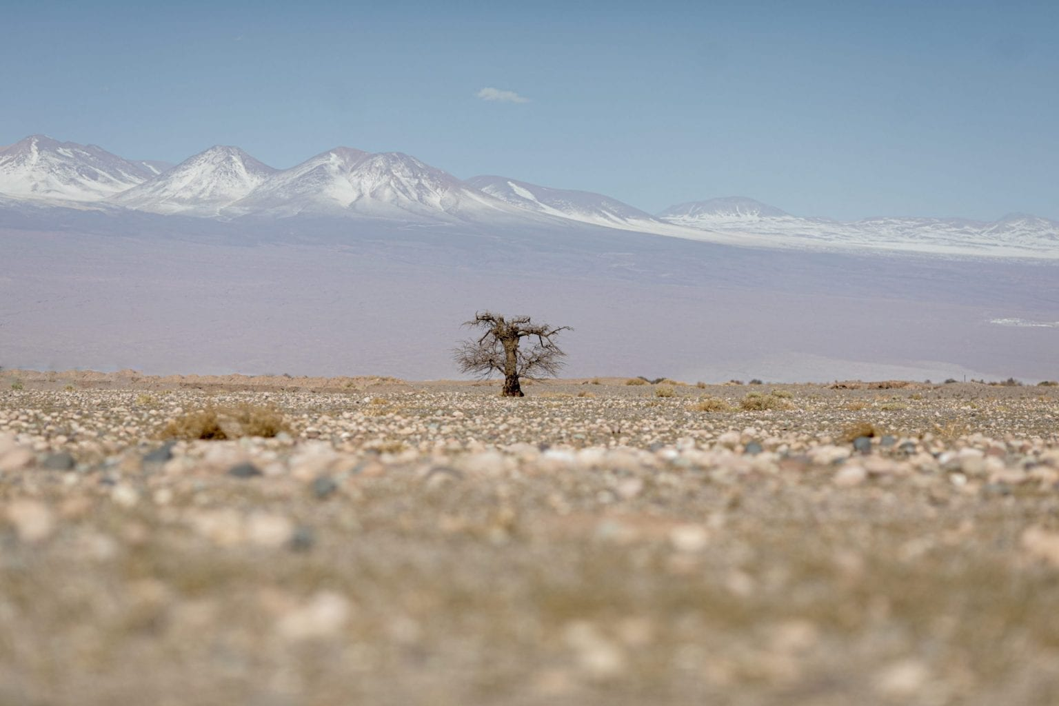 Med 15 mm nedbør årligt er Atacama verdens tørreste ørken.