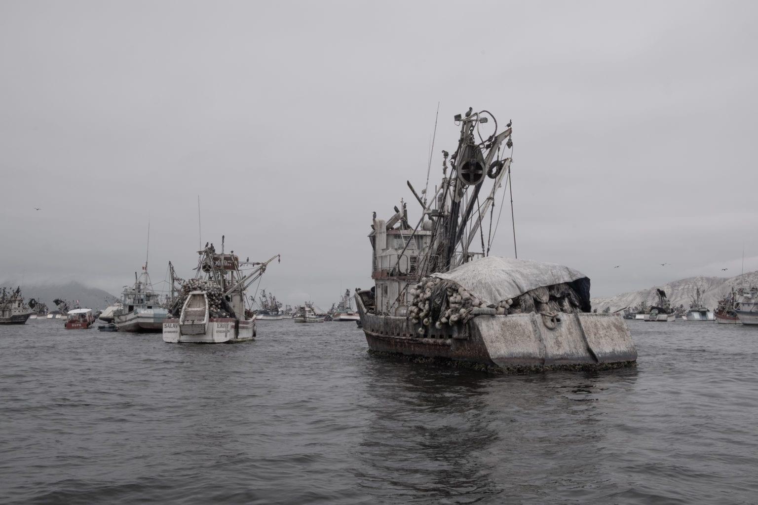 Danmark køber fiskeolie fra byen Chimbote i Peru, hvor disse skibe ligger. Alle fabrikkerne, Danmark køber fra er certificerede af MarinTrust, men det er slet ikke nok, lyder det fra kritikerne. Foto: Florence Goupil