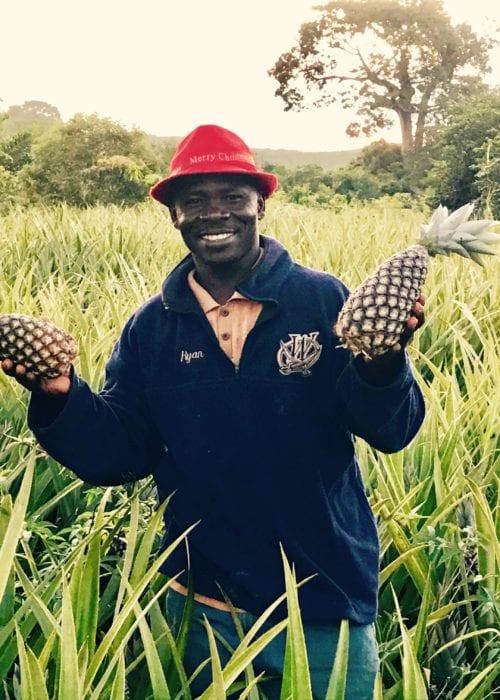 Jagten på denne ananasfarmer, der var posterboy for en bæredygtighedskampagne, ledte til en overraskende historie. Foto: Olivier van Beemen