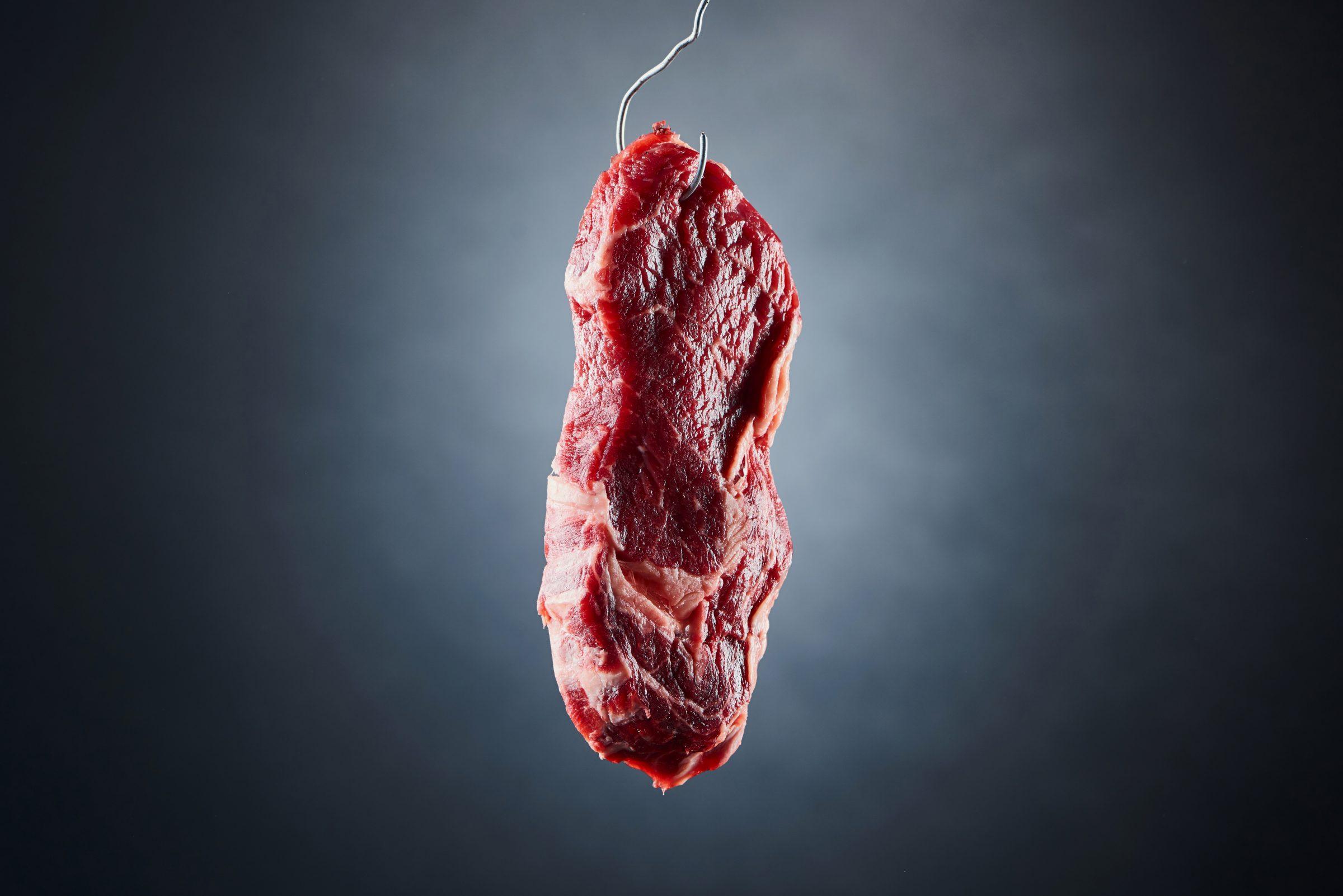brazil meat rain forest