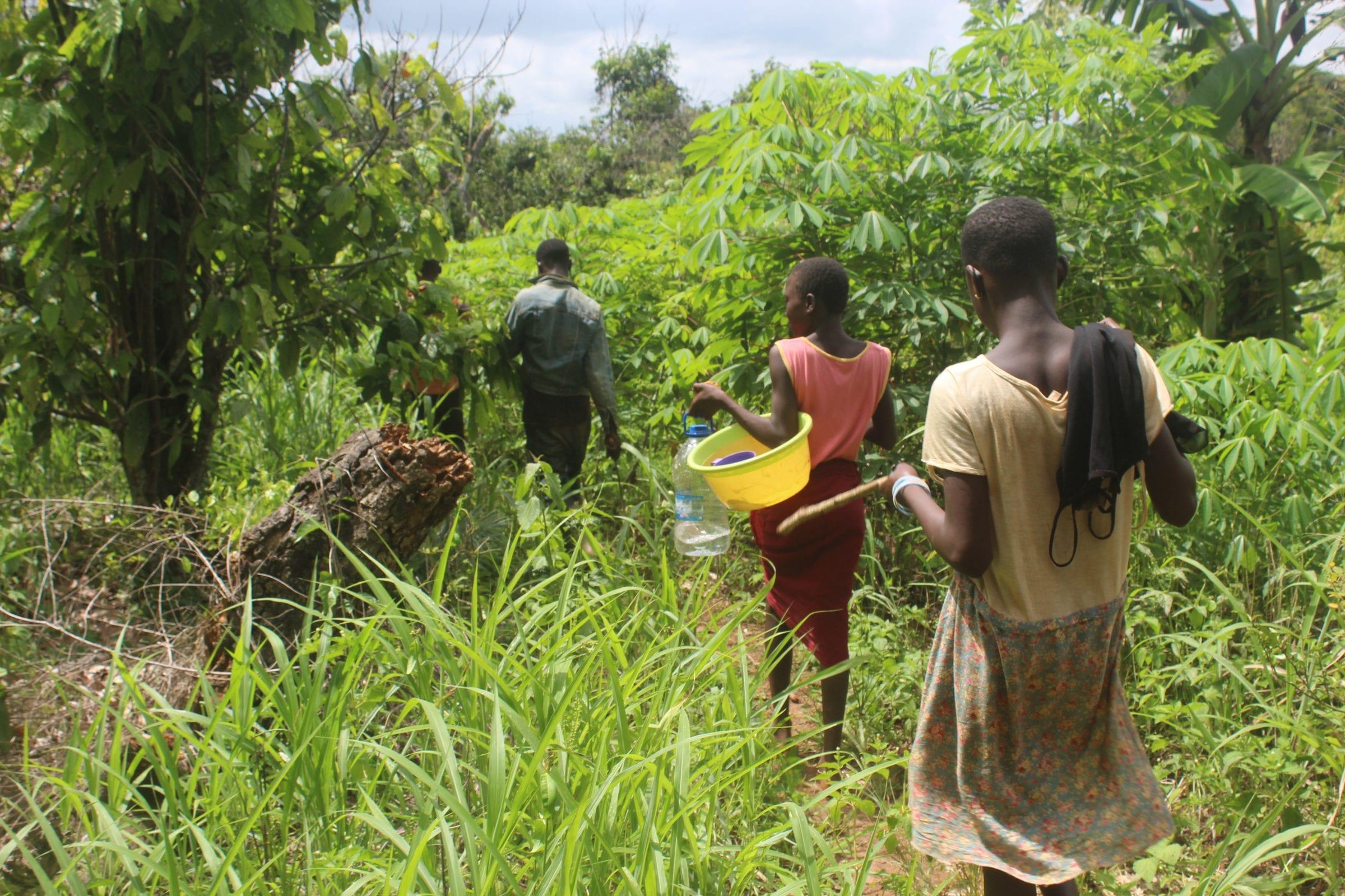 Børn på en kakaoplantage i Elfenbenskysten, som Danwatch besøgte i juni 2020.