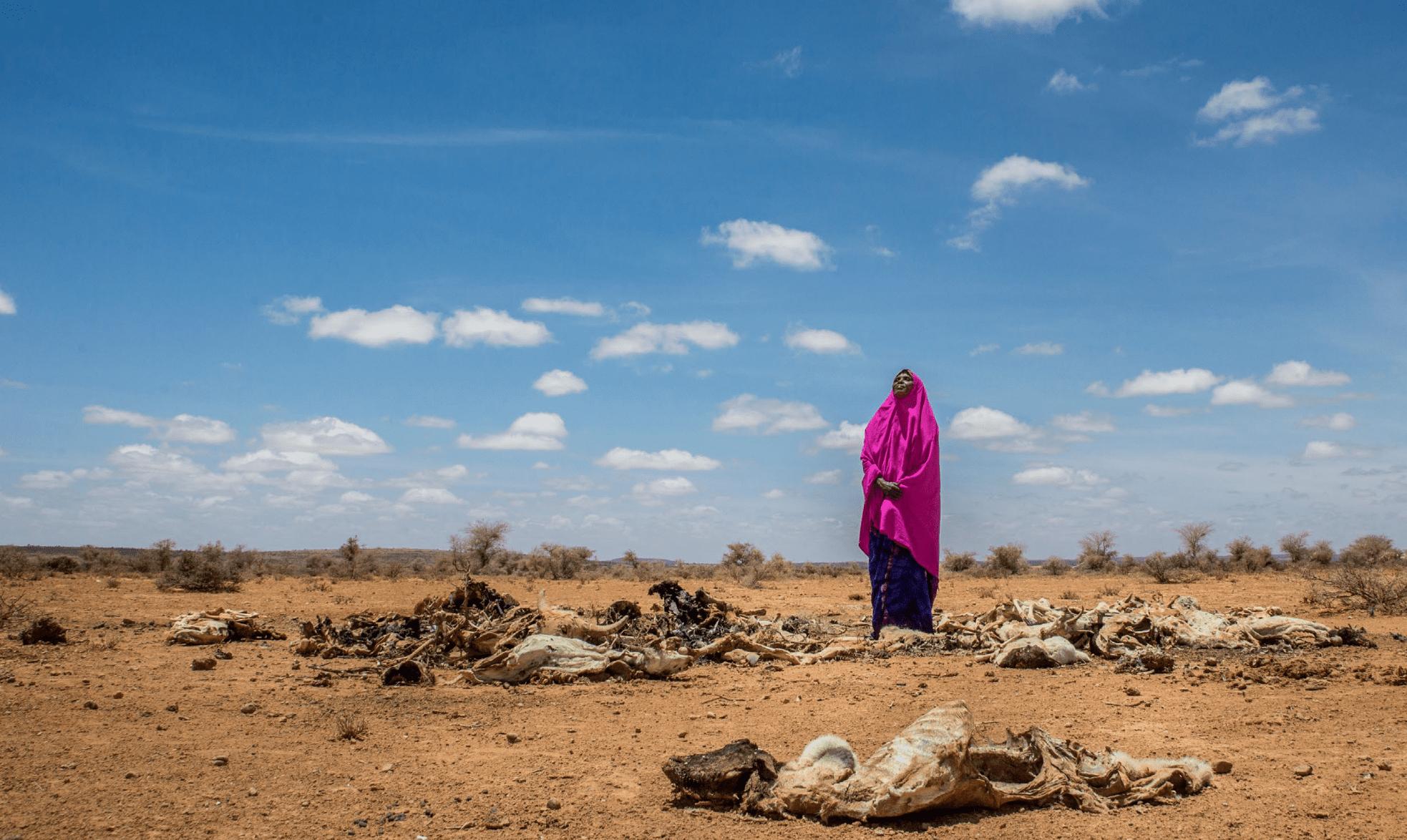 Klimaforandringerne rammer verdens fattigste lande mere mærkbart end verdens rige lande.  Foto: Care/Georgina Goodwill