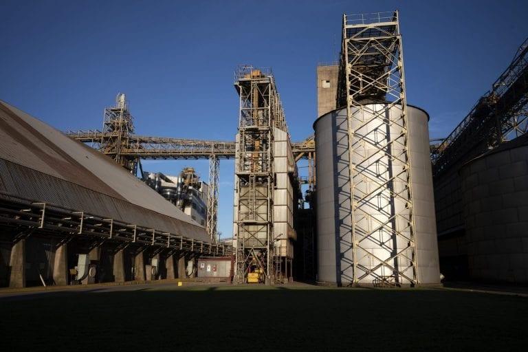 Hos Louis Dreyfus Company raffinerer de også sojaolie og andre produkter.