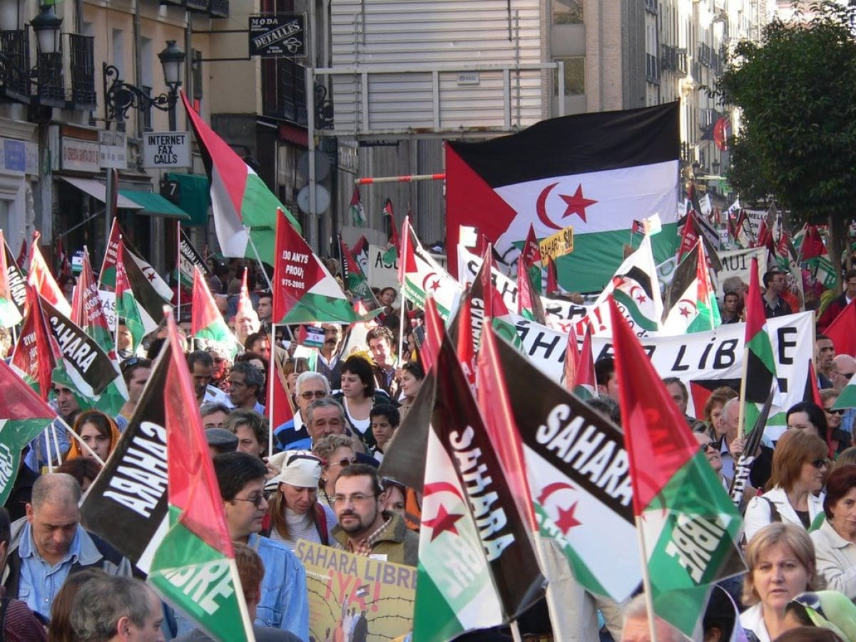 demonstration 2006 in madrid - contribute western sahara